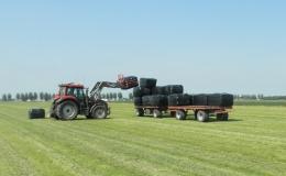 Gras - Balentransport