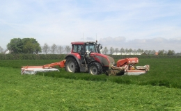 Gras - Maaiers met kneuzers